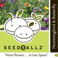 Hummingbird/Butterfly SeedBallz